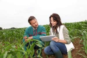 agriculture engineer jobs in dubai