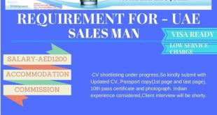 SALES MANAGER SALARY IN SALES JOBS