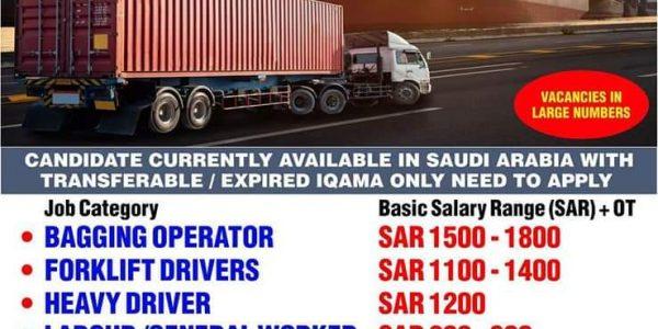 URGENTLY REQUIRED KINGDOM OF SAUDI ARABIA