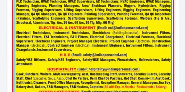 REQUIREMENT FOR LONG TERM AND SHUTDOWN PROJECT IN A LEADING MNC COMPANY