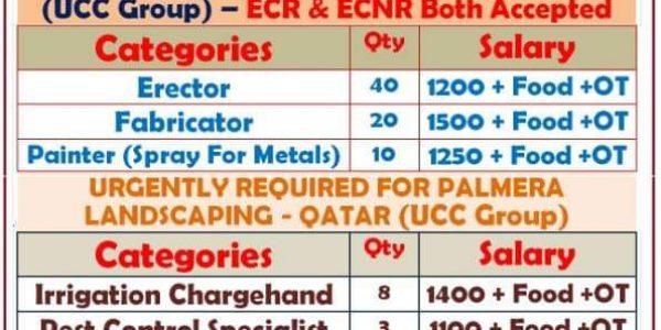 UCC QATAR JOB VACANCIES